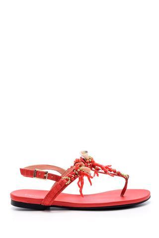 Kadın Deniz Kabuğu Detaylı Sandalet