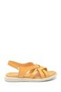 5638268195 Kadın Deri Bantlı Sandalet